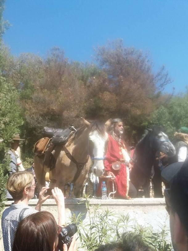 documenta-horses2