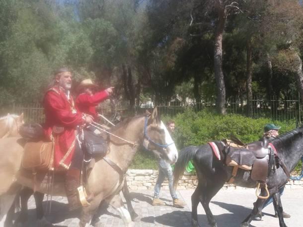 documenta-horses4